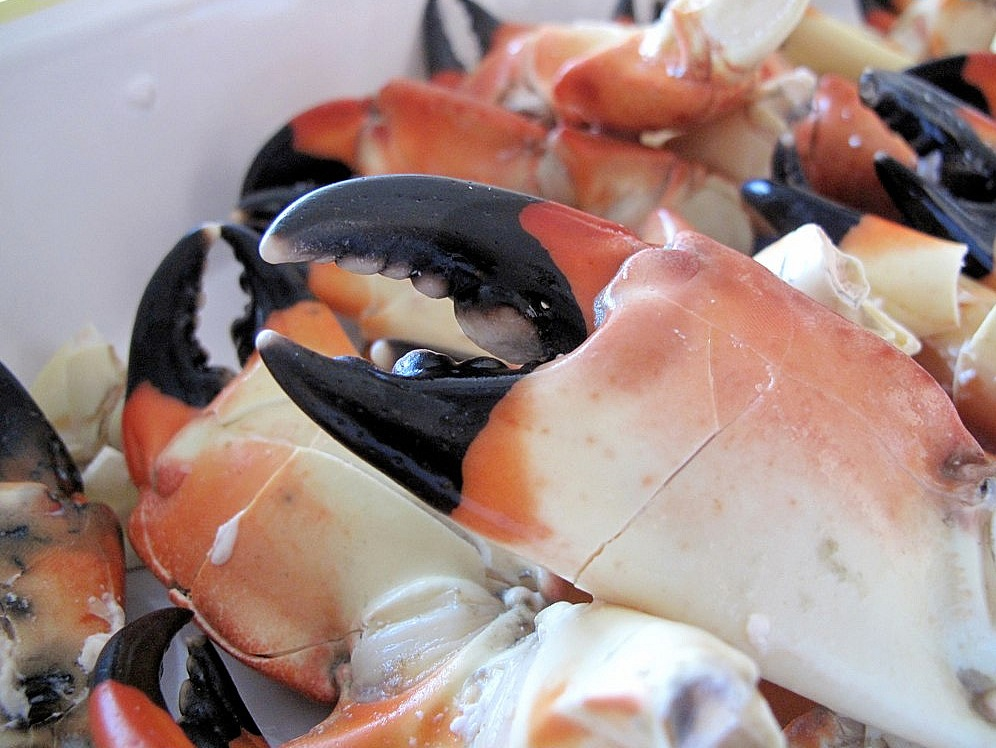 Lobster Lady Seafood Cape Coral S Best Seafood Restaurant